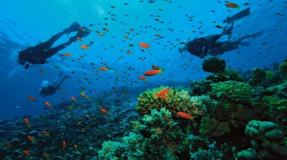 under-sea-deep-water-diving-wallpaper_1920x1074-min
